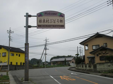Shinto Village Vineyard image
