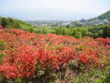 長峰公園 image
