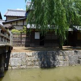 Warp Station Edo image