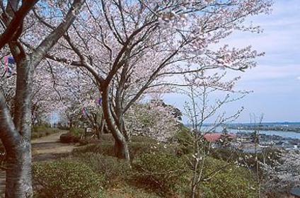 곤겐야마 공원 image