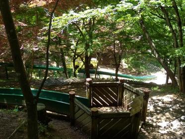 水户市森林公园 image