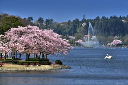 Lake Senba image