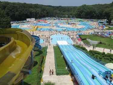 Igashira Park Ichimannin Pool image