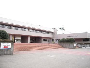 Sakura Kusabue Hill image