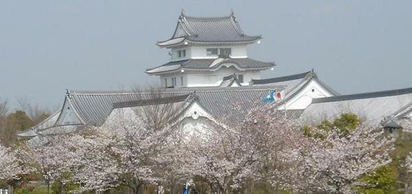 千葉県立関宿城博物館 image