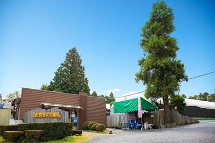 佐仓蘑菇园 image