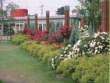 아라마키 장미 공원 image