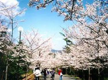 Hyogo Prefectural Harima Central Park image