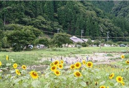 南光自然觀察村 image