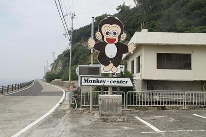 Awaji Island Monkey Center image