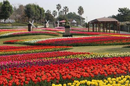 淡路島国営明石海峡公園 image