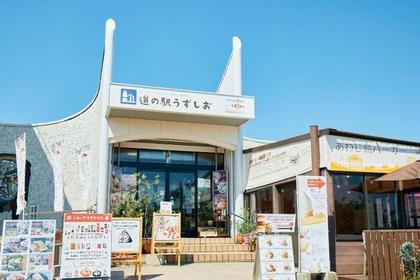 Roadside Station Uzushio image