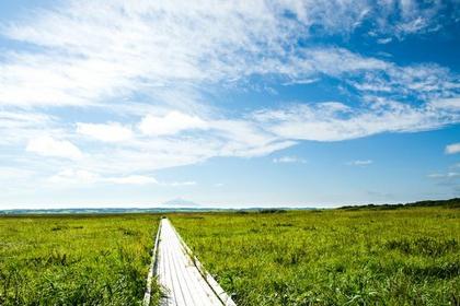 Sarobetsu Wetlands image