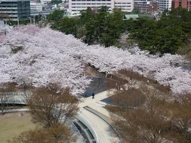 Hakusan Park image