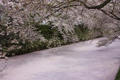 Hirosaki Park image