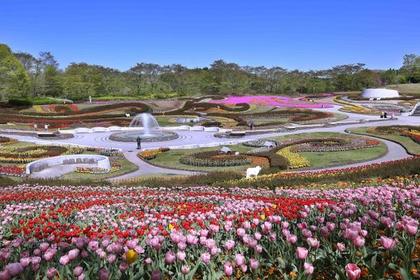 国営みちのく杜の湖畔公園 image