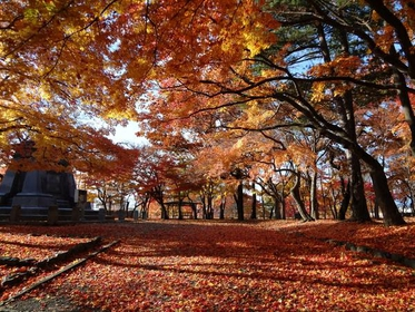 Morioka Castle Site Park image