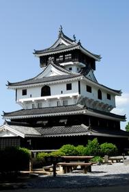 Iwakuni Castle image