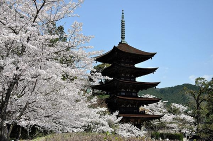 The Five-storeyed Pagoda of the Ruriko-ji Temple (a National Treasure) image