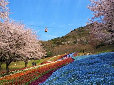 히노야마 공원 image