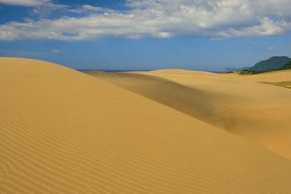 Tottori Sand Dunes image