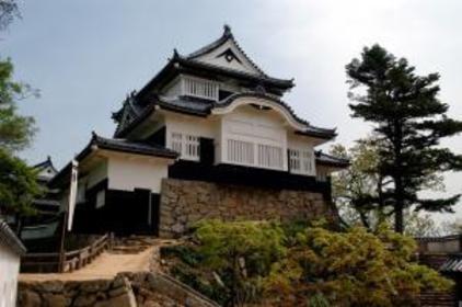 Bitchu Matsuyama Castle image