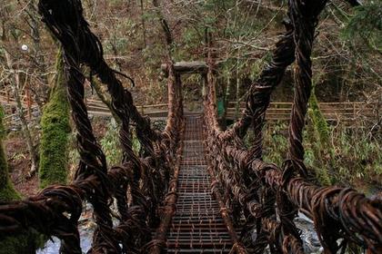 Oku-Iya Double Vine Bridge image