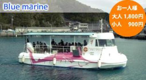海中観光船ブルーマリン image