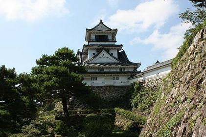 Kochi Castle image