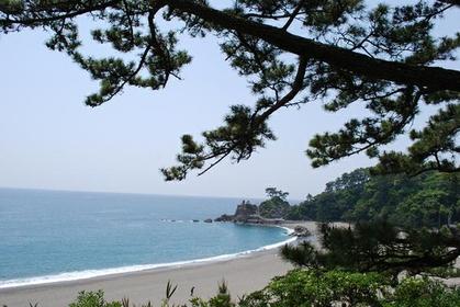 桂浜 image