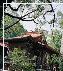 Taga Shrine image
