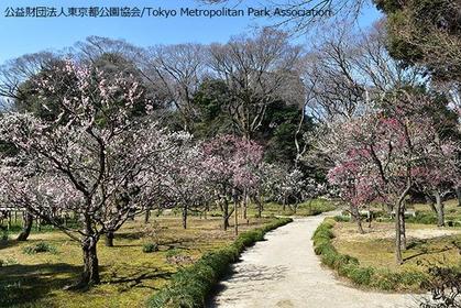 小石川後楽園 image
