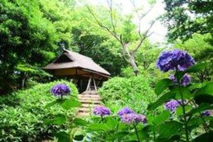 Rikugien Gardens image
