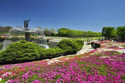 国営昭和記念公園 image