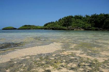 호시스나노 하마 해변 image