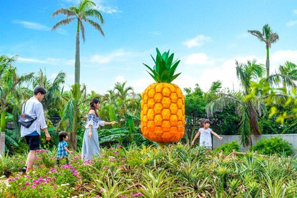 Nago Pineapple Park image