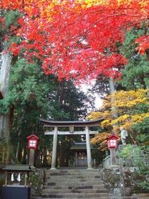 北口本宮富士淺間神社 image