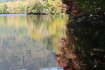 Lake Yunoko  image