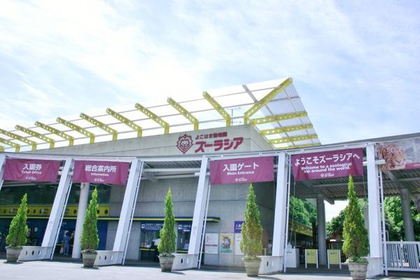 横濱動物園ZOORASIA image