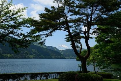 Lake Ashi image