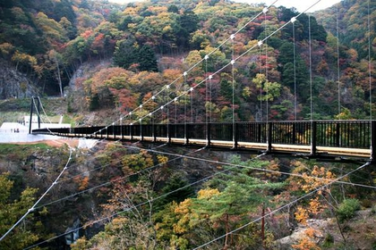 Kinu-Tateiwa Otsuribashi Suspension Bridge image