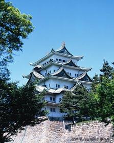 Nagoya Castle image