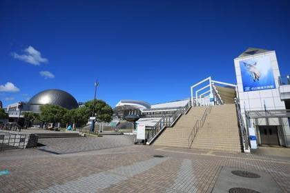 名古屋港水族館 image