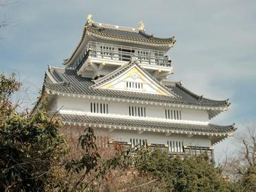 Gifu Castle image