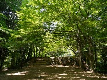 Takayama Castle Ruins image
