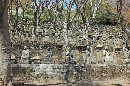 長慶寺 image