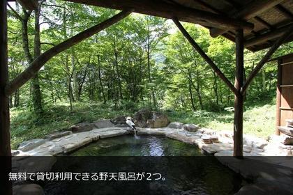 NAnoHANA-SANSO image