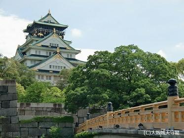 Osaka Castle image
