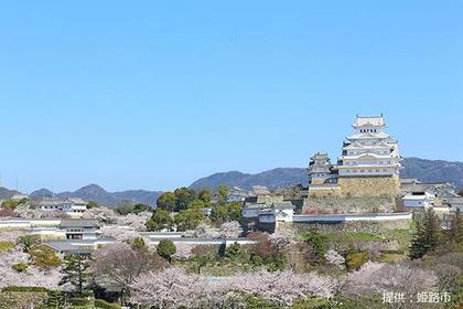 姫路城(白鷺城) image