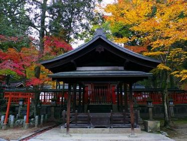 Tamukeyama Hachimangu Shrine image